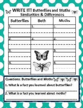 Butterflies and Moths: Chart Graphing Activities *Follow-Up Activities Included!