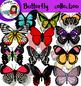 Butterflies collection clip art- 102 items!!