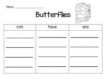 Butterflies in Kindergarten