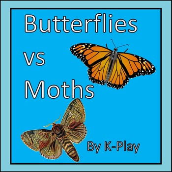 Butterflies vs Moths - a Comparison - PowerPoint Presentation Freebie