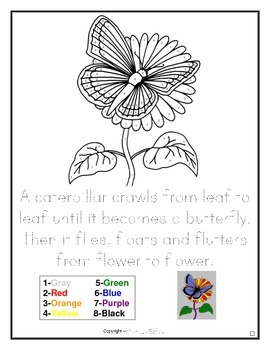 FREE DOWNLOAD Butterfly on Flower Drawing - Color by Numbers & Writing Activity