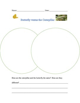 Butterfly & Caterpillar Compare/Contrast & KWL Chart