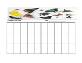 Butterfly Classroom Seating Chart Template For Music Classroom