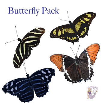 Butterfly Clip Art Bundle of Four