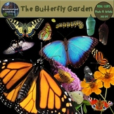 Butterfly Clip Art Monarch Life Cycle Photo & Artistic Digital Stickers