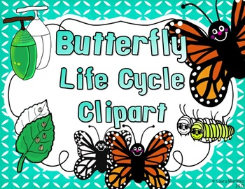 Butterfly Clipart: Life Cycle in 4 Stages
