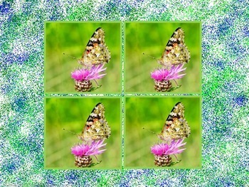 Butterflies Counting Cardinal Numbers Arrays Slideshow  Presentation Activity