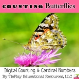 Counting Cardinal Numbers Arrays With Butterflies