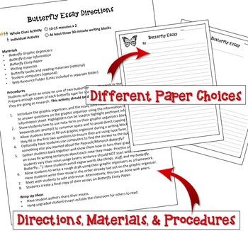 Butterfly Essay