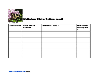 Butterfly Experiment Observation Sheet