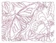 Butterfly Extreme Dot-to-Dot / Connect the Dots