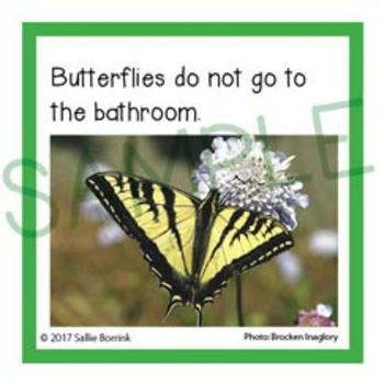 Butterflies Unit Activity - Fun Fact Cards for Games, Bulletin Board