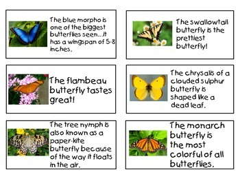 Butterfly Fact and Opinion T-Chart