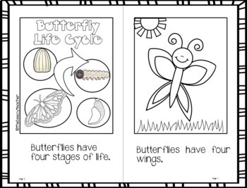 Butterfly Facts Booklet
