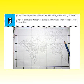 Butterfly Grid Drawing Art Lesson, Spring Art