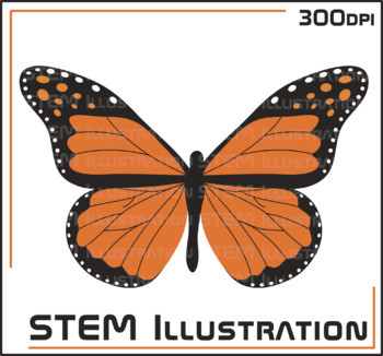 Butterfly Illustration Clip Art Clipart Image Graphic Bugs Insects