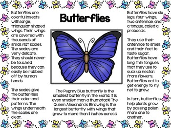 Butterfly Informational Text Posters and Coloring Book