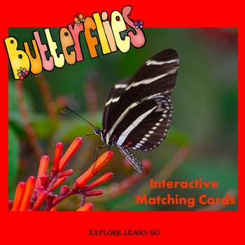 Butterfly Interactive Matching Cards / Hands-on Lessons /