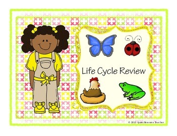 Butterfly, Ladybug, Chicken, Frog Life Cycle Review Graphi