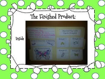 Butterfly Lapbook - Fun project for the Life Cycle of a Butterfly!