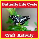 Butterfly Craft   Kindergarten 1st 2nd 3rd Grade   Life Cy