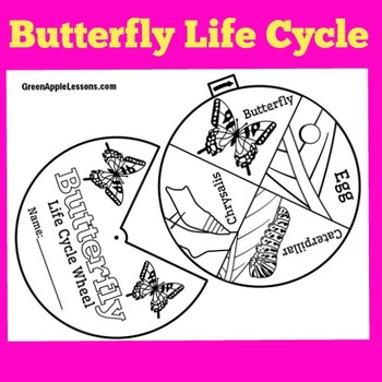 Butterfly Life Cycle Craft | Butterfly Life Cycle Wheel