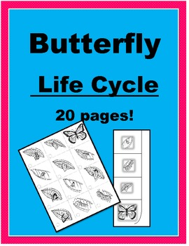 Butterfly Life Cycle - 20 pg set