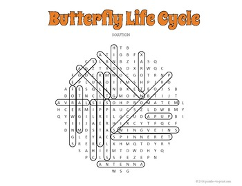 Butterfly Life Cycle Word Search