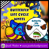 Animal Life Cycle Activities (Butterfly Life Cycle Craft)