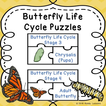 Life Cycle of a Butterfly Sequence Stages Butterfly Life Cycle Activity Puzzles