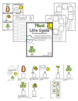Plant Life Cycle adapted book and activities