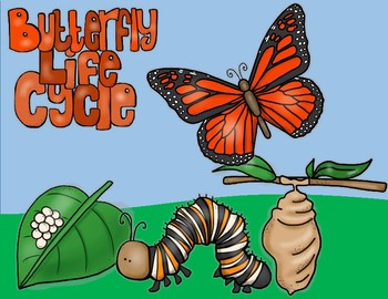Butterfly Life Cycle 3 Digit Addition With Regrouping Math Craft