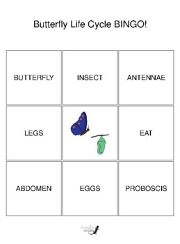 Butterfly Life Cycle 3 by 3 BINGO!