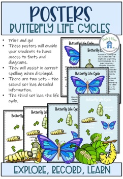 Butterfly Life Cycle Activities and Worksheets