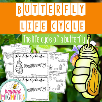Butterfly Life Cycle | 48 Pages for Differentiated Learnin