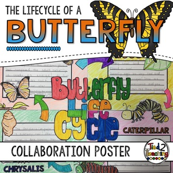 Butterfly Life Cycle Activity: Collaborative Research Poster