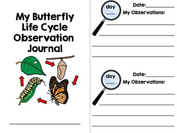 Butterfly Life Cycle Activity Pack {science and literacy center printables}