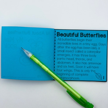 Butterfly Life Cycle Activity Page & Mini-Book