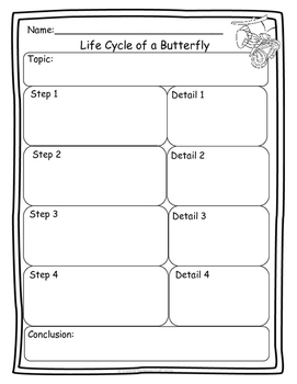 Butterfly Life Cycle Activity Set