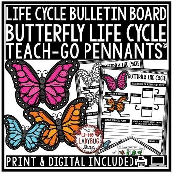 Butterfly Life Cycle Activity  • Teach- Go Pennants™
