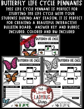 Butterfly Life Cycle Activity Science Insects Spring Center Teach- Go Pennants™