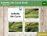 The Butterfly Life Cycle Book - Montessori Toddler Book (vocabulary)