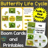 Butterfly Life Cycle Boom Cards & Printable Pages Real Pho
