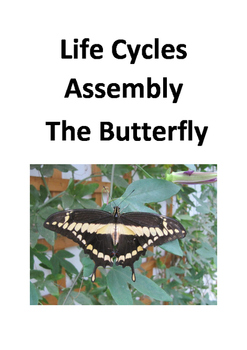 Butterfly Life Cycle Class Play