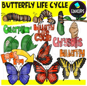Butterfly Life Cycle Clip Art Bundle {Educlips Clipart}