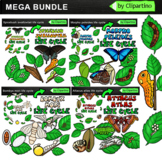 Butterfly Life Cycle Clip Art Bundle