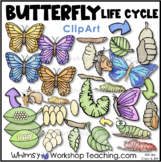 Butterfly Life Cycle Clip Art Whimsy Workshop Teaching