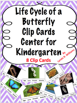 Butterfly Life Cycle Clip Card Center Kindergarten