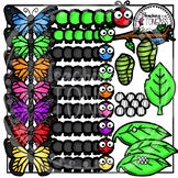 Butterfly Life Cycle Clipart (Butterfly Clipart)