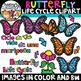 Butterfly Life Cycle Clipart {Life Cycles Clipart}